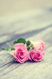 Roses bunch on old wooden background. Stock Photos