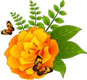 Roses with butterfies on the background. Royalty Free Stock Photos