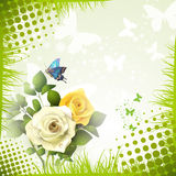 Roses and butterflies Royalty Free Stock Images