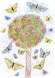 Roses and butterflies. Flowering tree roses watercolor stock illustration