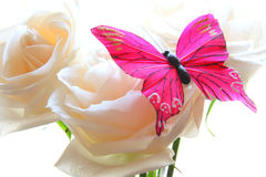 Roses and butterfly Royalty Free Stock Photo