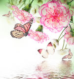 Roses and butterfly, floral background