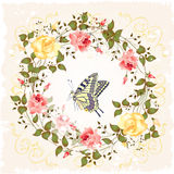 roses and butterfly Royalty Free Stock Photography