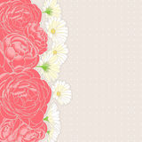 Roses and camomiles. Cute camomiles on beige background Royalty Free Stock Photography