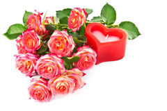 Roses and a candle on a white background. Stock Images