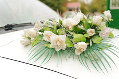 Roses on Car Bonnet Stock Photo