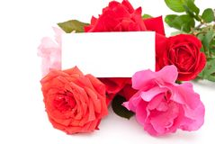 Roses with card Royalty Free Stock Photo