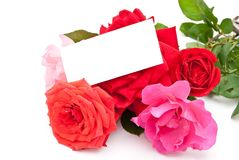 Roses with card Royalty Free Stock Photos