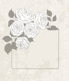 Roses and card Stock Image