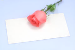 Roses on Card. (soft diffuser on the camera len) best shot for themes of valentine's day Royalty Free Stock Images