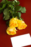 Roses and card Royalty Free Stock Photos