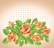 Roses card fine Royalty Free Stock Images