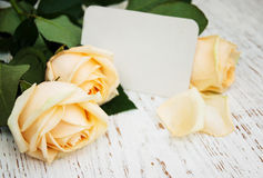 Roses with a card Royalty Free Stock Photos