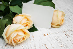 Roses with a card Royalty Free Stock Image