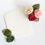 Roses and card on white background. Royalty Free Stock Photo
