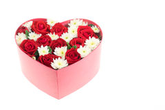 Roses and carnations held in the heart shape box Stock Image