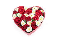 Roses and carnations held in the heart shape box Royalty Free Stock Image