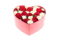 Roses and carnations held in the heart shape box Stock Photos