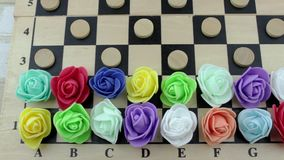 Roses and checkers on the chess field stock video