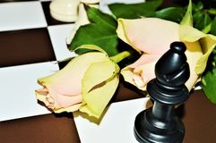 Roses, chessboard, love as a game Royalty Free Stock Images