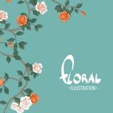 Roses chics sur un fond de turquoise Image libre de droits