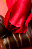 Roses and Chocolate Candy Stock Photo