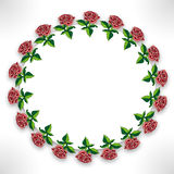 Roses on circle Royalty Free Stock Images