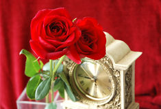 Roses with Clock. Pair of pretty red roses with an antique ornate clock royalty free stock images