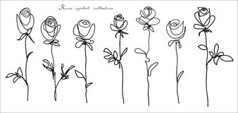 Roses. Collection of  flower sketch on white background Stock Image