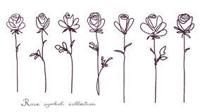Roses. Collection of isolated rose flower sketch on white background Royalty Free Stock Photos