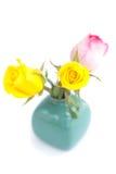 Roses colorées dans le vase d'isolement sur le blanc Photos libres de droits