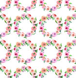 Roses colorées de wildflowers de beau ressort magnifique sophistiqué lumineux mignon merveilleux avec le modèle de bourgeons Photo stock