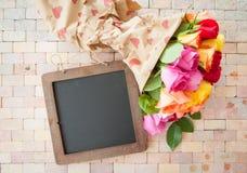 Roses colorées lumineuses Photos libres de droits