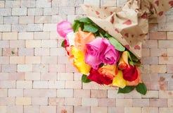 Roses colorées lumineuses Photographie stock libre de droits