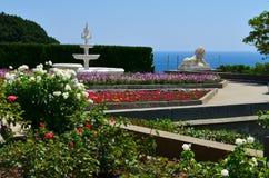 Roses contre la mer Photos libres de droits