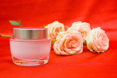 Roses and cream on a red background Stock Image