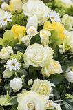 Roses in cream and yellow Stock Photo