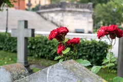 Roses and cross. Stock Image