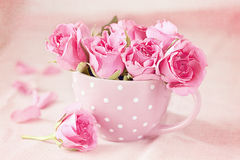 Roses in a cup Stock Photos