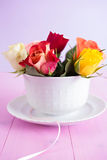 Roses in cup Stock Photography