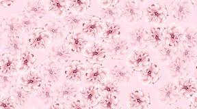 Roses d'aquarelle, modèle sans couture floral illustration libre de droits