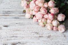 Roses d'arbuste roses sur le fond en bois de vintage avec l'espace de copie pour le texte Photographie stock libre de droits