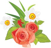 Roses and daffodils. Festive bouquet Royalty Free Stock Photo