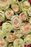 Roses dans différentes nuances de la disposition rose et nuptiale Photos libres de droits