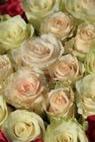 Roses dans différentes nuances de la disposition rose et nuptiale Images libres de droits