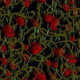 Roses dans l'obscurit? illustration stock