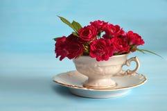 Roses dans la tasse de thé sur le fond bleu Images libres de droits