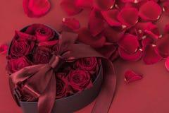 Roses dans le boîte-cadeau en forme de coeur avec le ruban et des pétales sur le rouge, concept de vacances de jour de valentines Image libre de droits