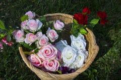 Roses dans le panier Photographie stock libre de droits