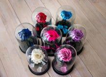 Roses dans un flacon sous le verre Comme cadeau pour les vacances photo stock